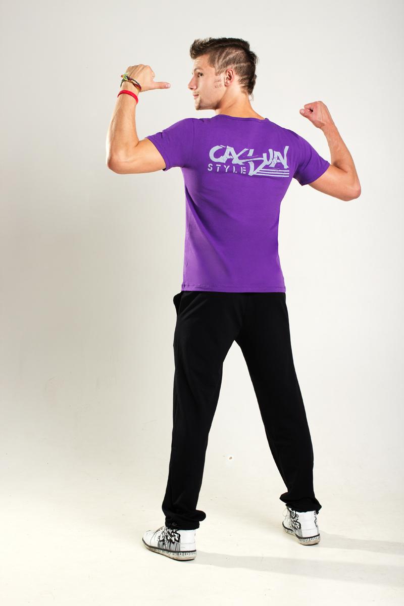 Футболка мужская Casual (фиолет)<br><br>Размер: 54