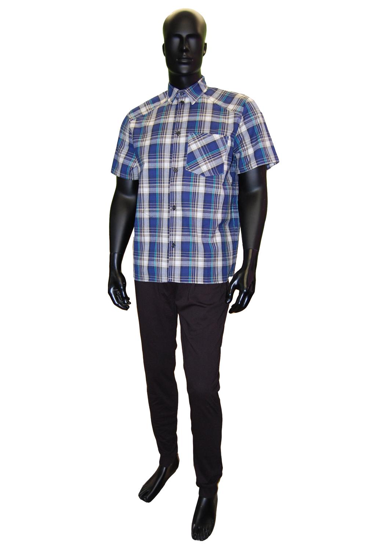 Рубашка мужская Алексей короткий рукав, шотландкаРубашки<br><br><br>Размер: Синий