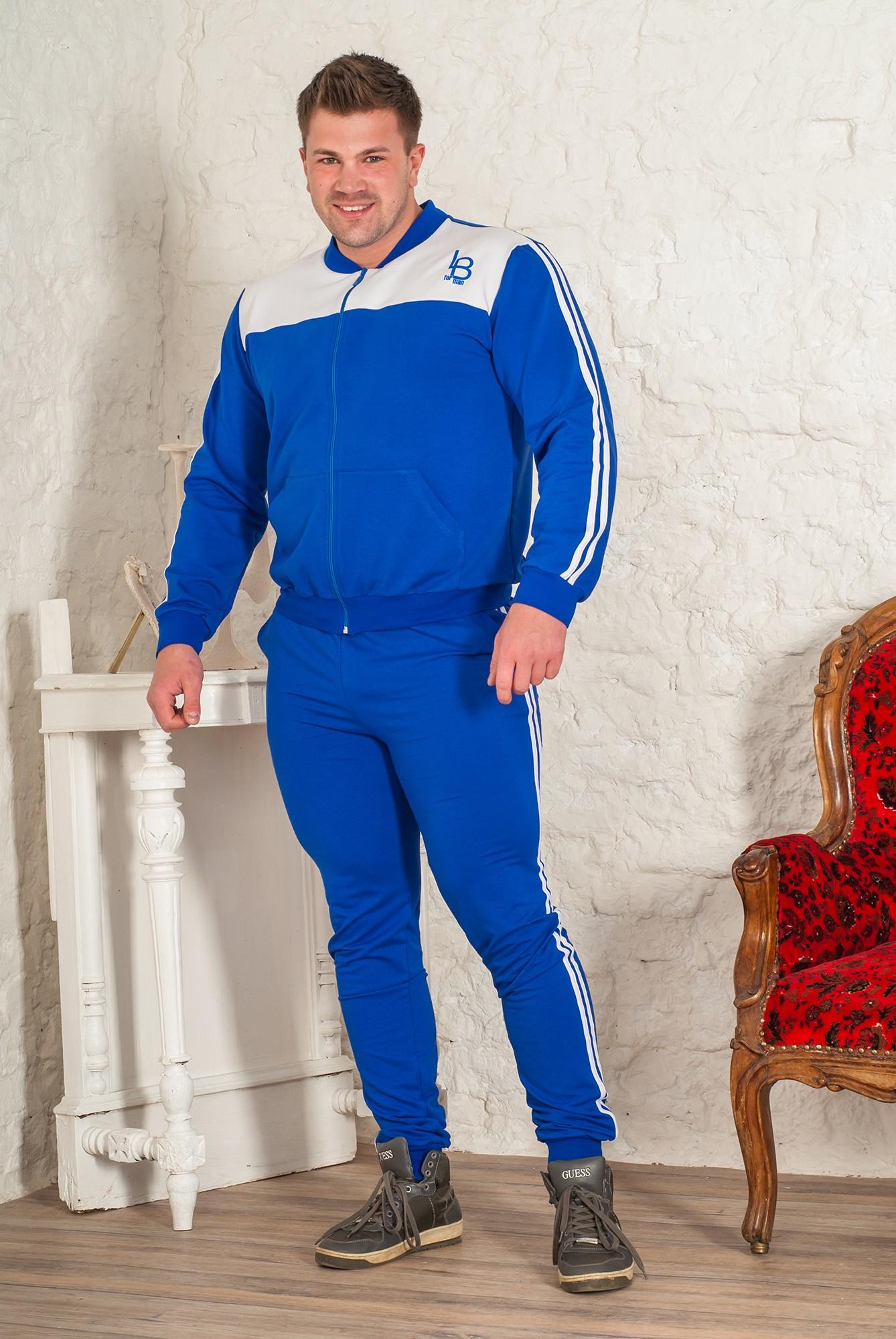 Костюм мужской Баско М-2 толстовка и брюкиКостюмы<br><br><br>Размер: 54