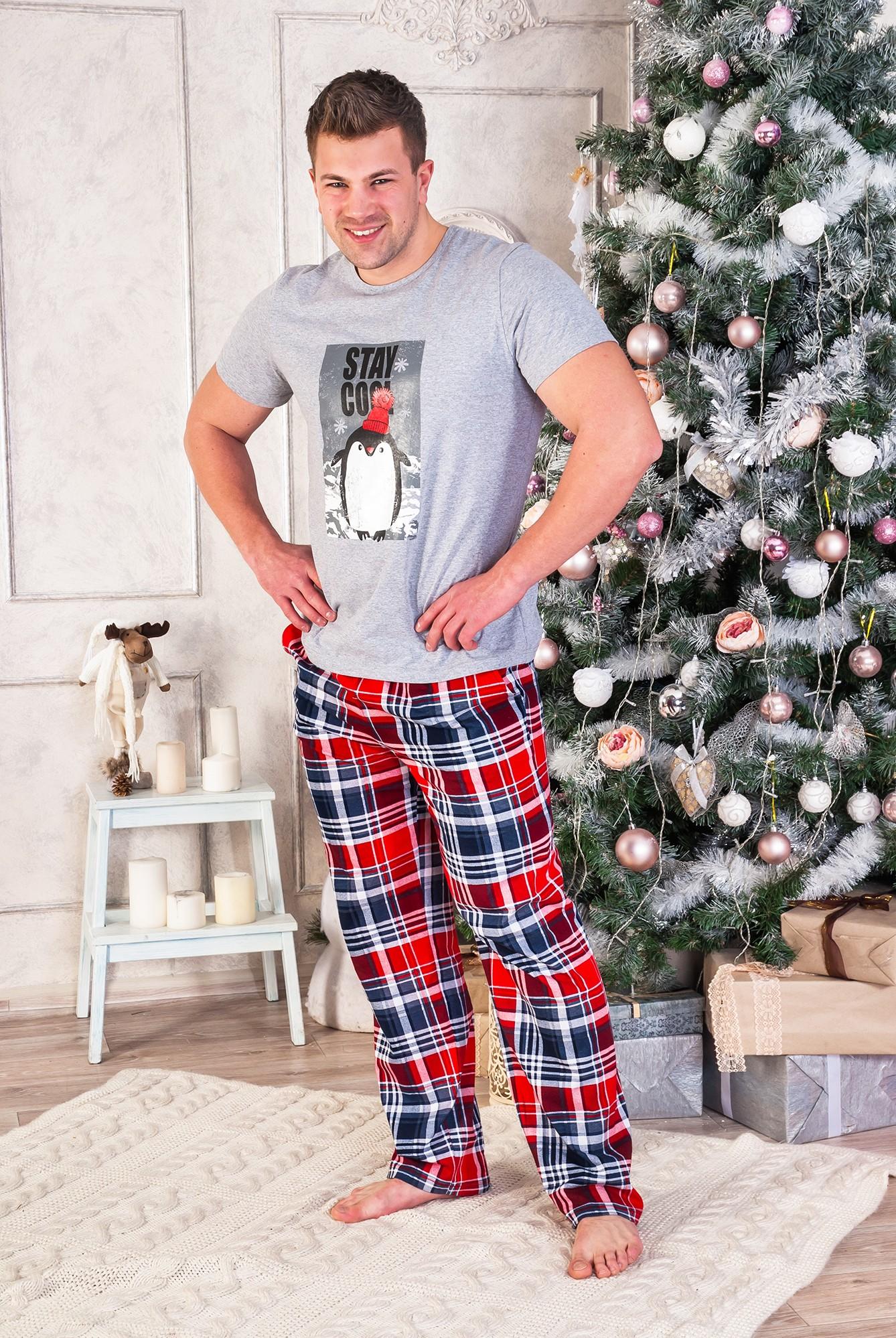 Костюм мужской Пингви мэн футболка и брюкиКостюмы<br><br><br>Размер: 52