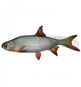 """Антистрессовая игрушка Рыба """"Жерех"""" гигант."""
